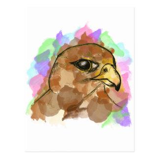 Falcon Postcard