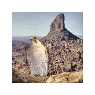Falcon Stretched Canvas Prints