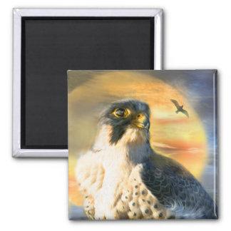 Falcon Sun Art Magnet