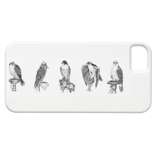 Falconry Portraits Iphone case