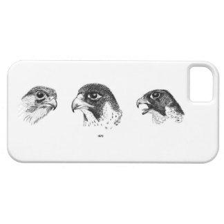 Falcory I phone case