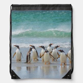 Falkland Islands. Saunders Island. Gentoo 5 Drawstring Bag