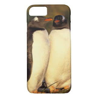 Falklands Islands. Gentoo Penguins.  (Pyroscelis iPhone 8/7 Case
