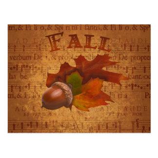 Fall Acorns Post Card