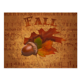 Fall Acorns Postcard