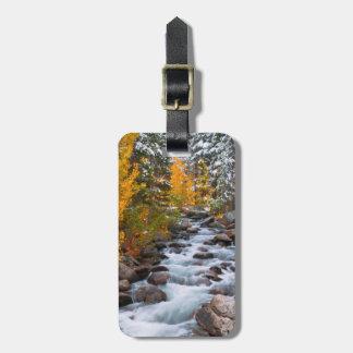 Fall along Bishop creek, California Luggage Tag