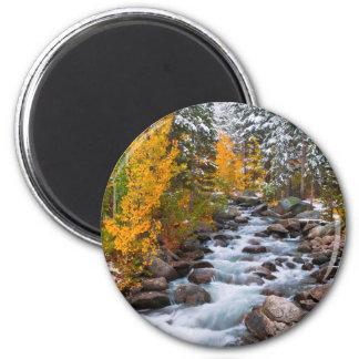 Fall along Bishop creek, California Magnet