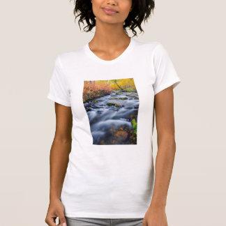 Fall along Lundy Creek, California T-Shirt