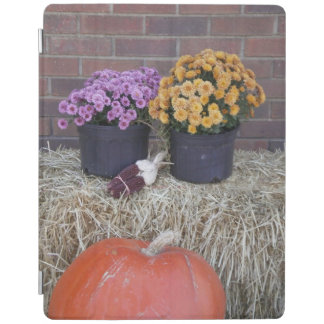 Fall Autumn Holidays iPad Cover