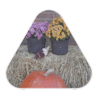 Fall Autumn Holidays Bluetooth Speaker