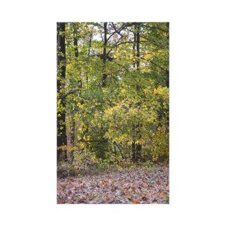 fall backdrop canvas print