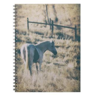 Fall Beauty Notebooks