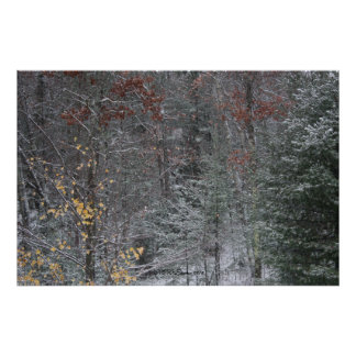 Fall Before Winter Poster