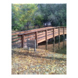 Fall bridge custom flyer