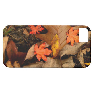 Fall Camo Case Barely There iPhone 5 Case