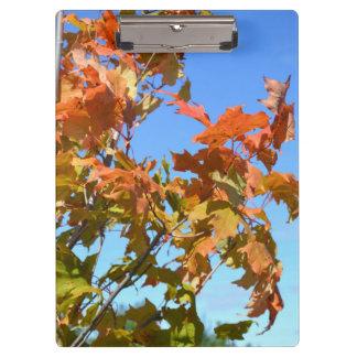 Fall Clipboard