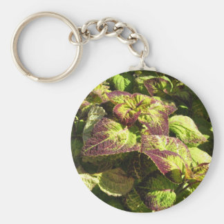 fall clothes key ring
