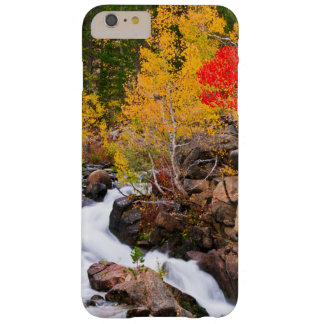 Fall color along Bishop Creek, CA Barely There iPhone 6 Plus Case