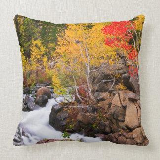 Fall color along Bishop Creek, CA Cushion