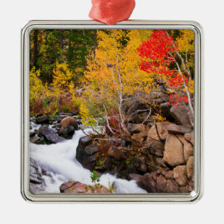 Fall color along Bishop Creek, CA Silver-Colored Square Decoration