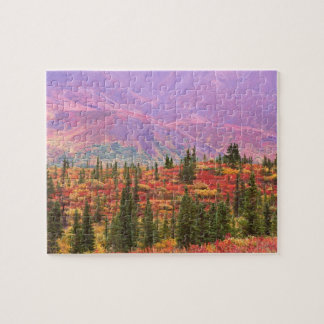 Fall color in Denali National Park Jigsaw Puzzle