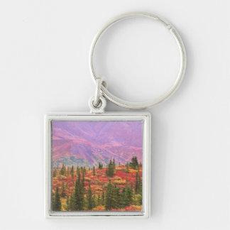 Fall color in Denali National Park Key Ring