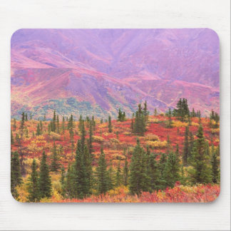 Fall color in Denali National Park Mouse Mat