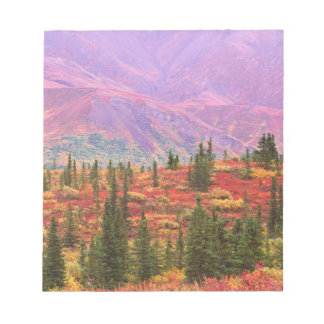 Fall color in Denali National Park Notepads