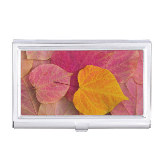 Fall color on Forest Pansy Redbud fallen Business Card Holder