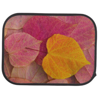Fall color on Forest Pansy Redbud fallen Car Mat