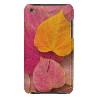 Fall color on Forest Pansy Redbud fallen iPod Case-Mate Case