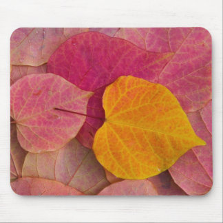 Fall color on Forest Pansy Redbud fallen Mouse Mat