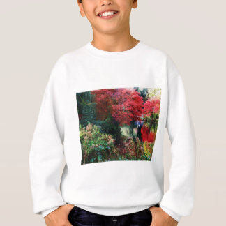 Fall Colors and Autumn Leaves Sweatshirt