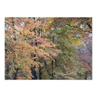 Fall Colors Central Park New York City 13 Cm X 18 Cm Invitation Card