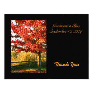 Fall Colors Country Wedding Thank You Card Custom Announcement