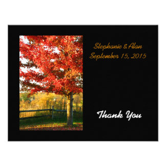 Fall Colors Country Wedding Thank You Card Invite