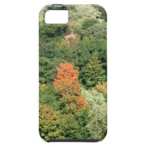 Fall Colors : HIGH PARK Toronto iPhone 5 Cover