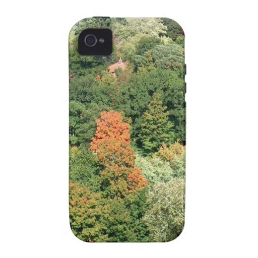 Fall Colors : HIGH PARK Toronto iPhone 4 Case