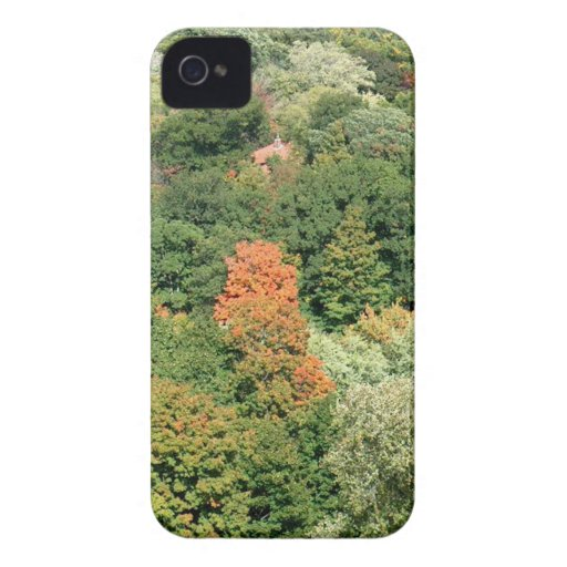 Fall Colors : HIGH PARK Toronto iPhone 4 Cover