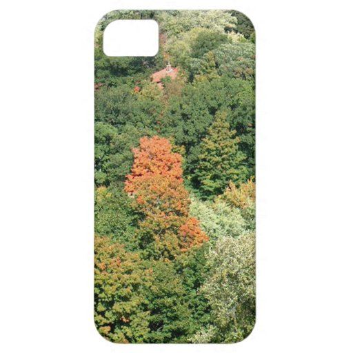 Fall Colors : HIGH PARK Toronto iPhone 5 Case