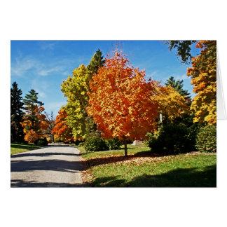 Fall Colors in Cincinnati Card