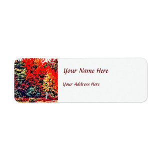 Fall Colors in New England Return Address Label