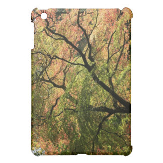 Fall Colors iPad Mini Cover