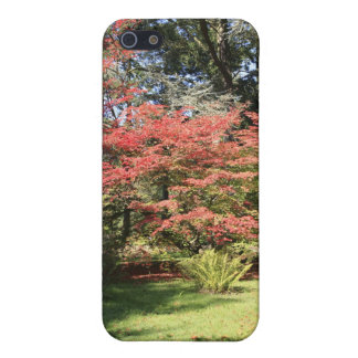 Fall Colors iPhone 5 Covers