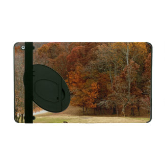 Fall Colors Landscape Autumn Trees Leaves Deer iPad Cover