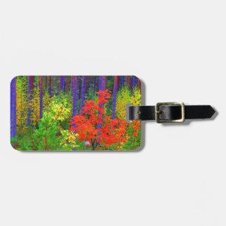 Fall colors luggage tag