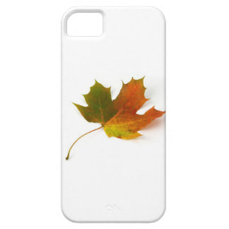 Fall Colors Maple Leaf iPhone 5 Case
