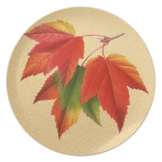 Fall Colors Maple Leaves on Autumn Gold Plate