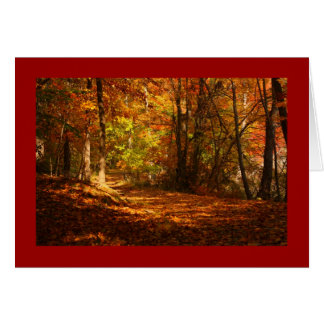 Fall Colors Note Card