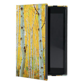Fall colors of Aspen trees 1 Cover For iPad Mini